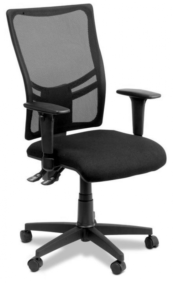 Lifestyle Ergonomic Chair