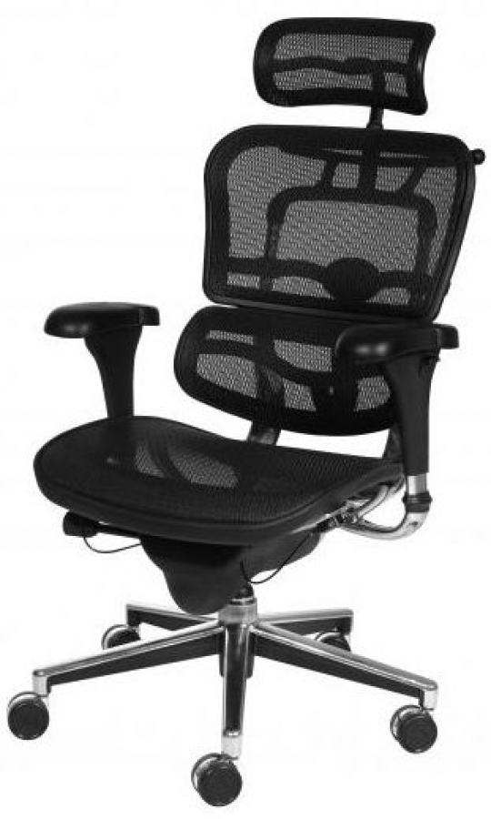 Aero Ergonomic Mesh Office Chair